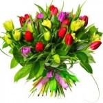 hdwallpapersimage.com-colorful-tulip-bouquet-wide-hd-wallpaper-1920x1200